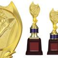 Bronzes【ブロンズ】VE-4815空手
