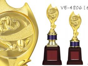 VE-4806 水泳