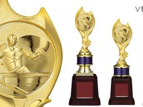 Bronzes【ブロンズ】VE-4808卓球