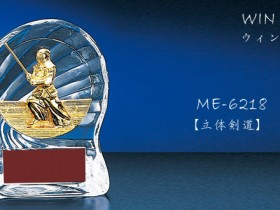 WIN Shields【ウィンシールド】MEL-6218剣道