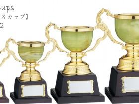 Onix Cups 【オニックスカップ】DS-412