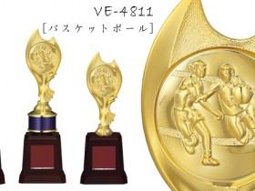 Bronzes【ブロンズ】VE-4811バスケットボール