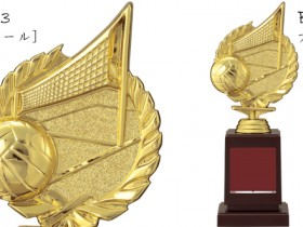 Bronzes【ブロンズ】VE-4523バレーボール