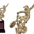 Bronzes【ブロンズ】VE-3596BMX