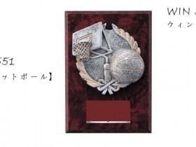 Win Shields【ウィンシールド】CE-5551バスケットボール
