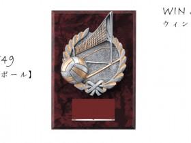Win Shields【ウィンシールド】CE-5549バレーボール