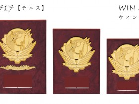 Win Shields【ウィンシールド】CE-5717テニス
