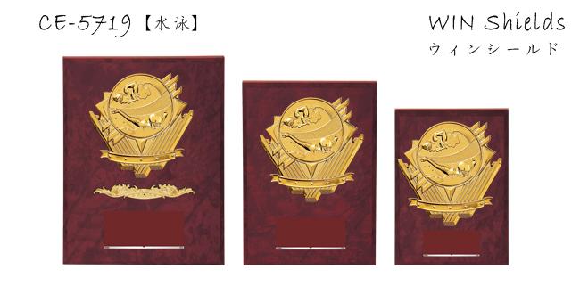 Win Shields【ウィンシールド】CE-5719水泳