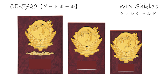 Win Shields【ウィンシールド】CE-5720ゲートボール