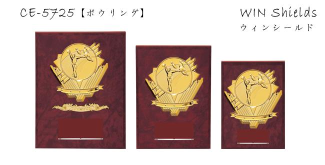 Win Shields【ウィンシールド】CE-5725ボウリング