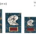 楯ウィンシールド CE-5587野球