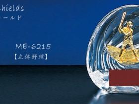 Win Shields【ウィンシールド】ME-6215野球