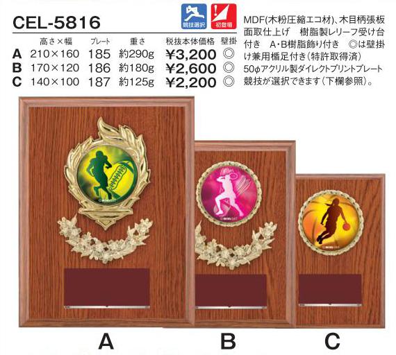 Win Shields【ウィンシールド】CEL-5816競技選択 アクリルダイレクトプリントプレート