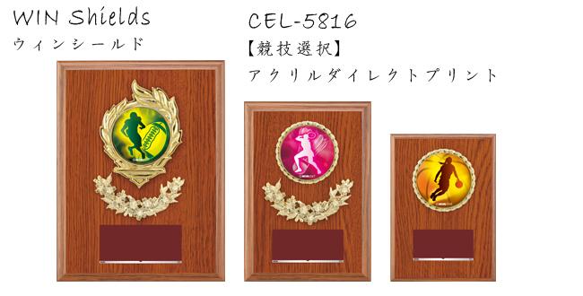 Win Shields【ウィンシールド】CEL-5816競技選択