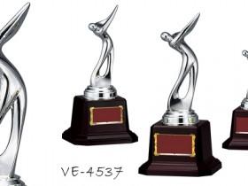 Golf【ゴルフ】VE-4537