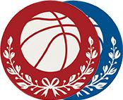 アルミレーザープレート バスケットボール
