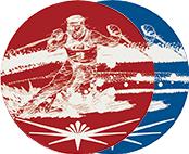 アルミレーザープレート スキー