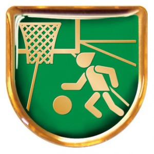 VTOPレリーフ バスケットボール