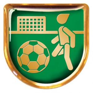 VTOPレリーフ サッカー