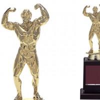 Bronzes【ブロンズ】VE-4732 ボディービル