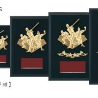 Win Shields【ウィンシールド】CE-5596野球
