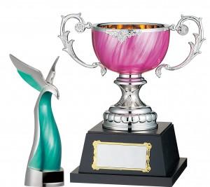 trophy-gorenja-cup