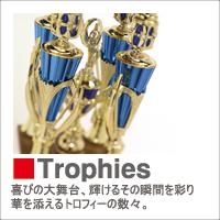 boX-trophies