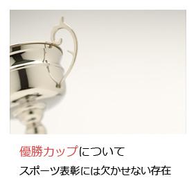 WINの表彰記念品 優勝カップ