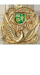 サッカーメダル