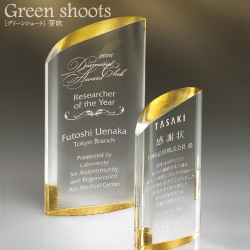 Green Shoots グリーンシュート 芽吹